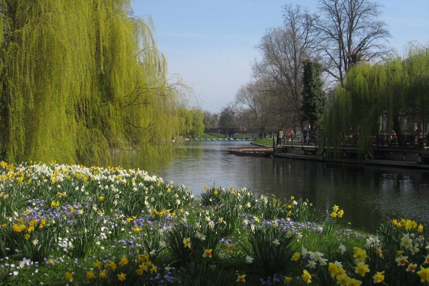 universidad-cambridge-jardines